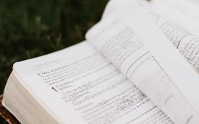 How the Apostle Paul Teaches Writers to Craft Authentic Character Conversions